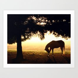 Bowing to the Sunrise Art Print