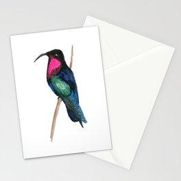 Purple-throated Carib Stationery Cards