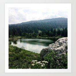 Bloomington Lake Art Print