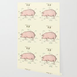 Anatomy of a Pig Wallpaper