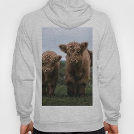 Scottish Highland Cattle Calves - Babies playing II Hoody