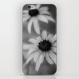 Black eyed susan 01 iPhone Skin
