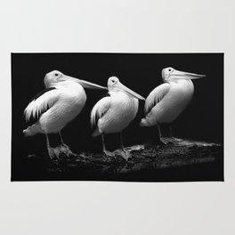 Pelican Trio black and white Rug