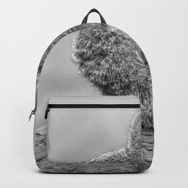 Meerkat (Black and White) Backpack