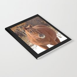 Little Red Mare Notebook