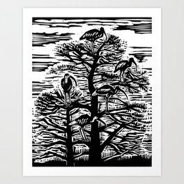 Five Ibis Art Print