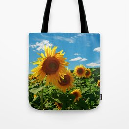 Sunflowers In Sunflower Field Tote Bag