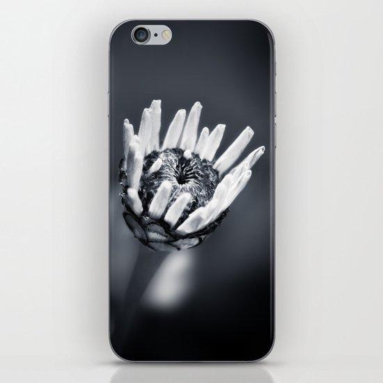 LIFE IN MONO - FILIGREE iPhone & iPod Skin