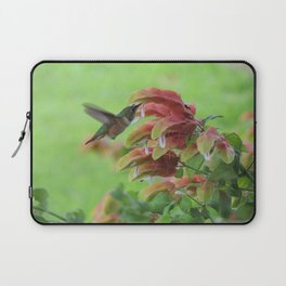 Hummingbird in Justicia Laptop Sleeve