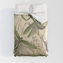 Grasshopper & Mantis Comforters