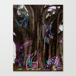 Tule Canvas Print