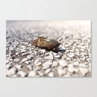 insect Canvas Prints featuring Insect by Yannik Meka