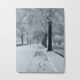 When It Snowed Metal Print
