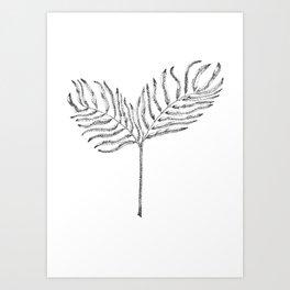 Palmleave Art Print