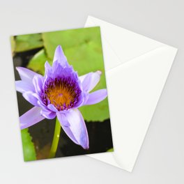 Blue Water Lily Stationery Cards