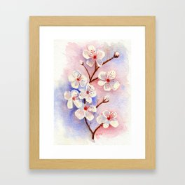 Cherry Blossoms–Watercolor Framed Art Print