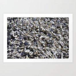 Shucked Oyster Shells Art Print