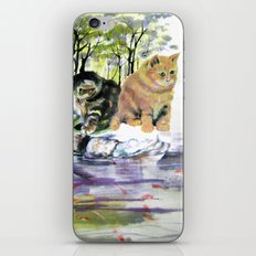 lake of desires iPhone & iPod Skin