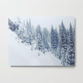 Winter trail though pines Metal Print