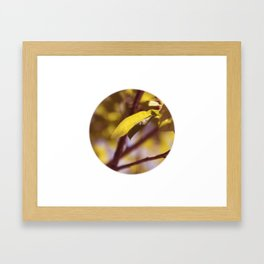 Leaf No. 6 Framed Art Print
