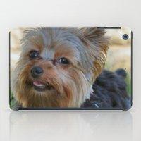 yorkie iPad Cases featuring Little Yorkie by IowaShots
