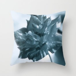"""""""Rose Theatre"""" by ICA PAVON Throw Pillow"""