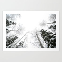 """""""Never cut a tree down in the wintertime"""" Art Print"""