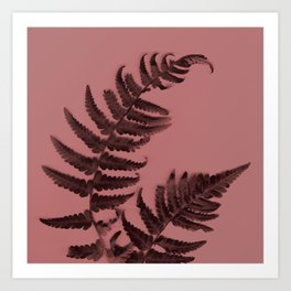 Fern on marsala Art Print