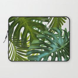 Palm and Monstra Laptop Sleeve