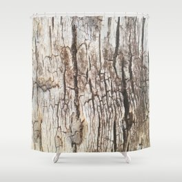 Beyond Cracks Shower Curtain