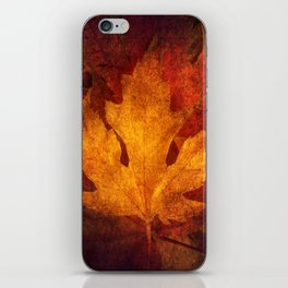 Cycle Modern Seasonal Art Design Photograph iPhone Skin
