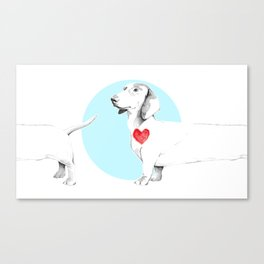 Long dog Canvas Print