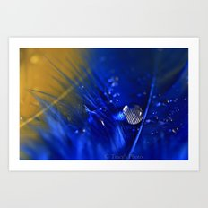 Feather Drop Art Print