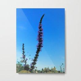 Prairie Sky Metal Print