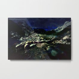 Float Metal Print