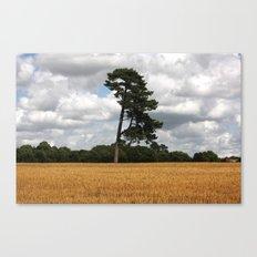 Solitude Canvas Print
