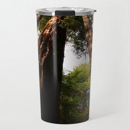 Redwood Tree Tops Travel Mug