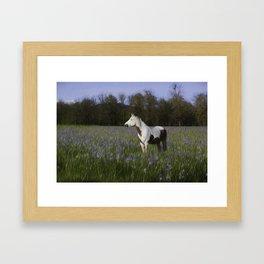 Field of Flowers Framed Art Print