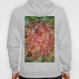 The beautiful evidence Hoody