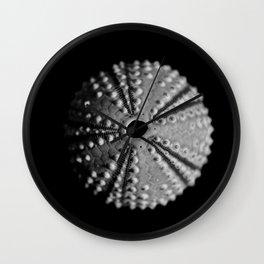 Sea Urchins... Wall Clock