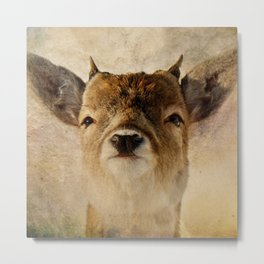 Little antlers Metal Print