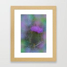 little pleasures of nature -161- Framed Art Print