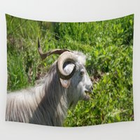 butcher billy Wall Tapestries featuring Side View of A Billy Goat Grazing by taiche