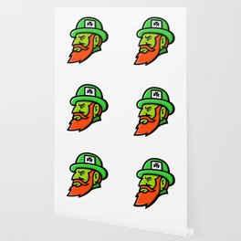 Leprechaun Head Mascot Wallpaper