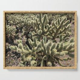 Desert Bloom Serving Tray