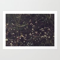 constellation Art Prints featuring Constellation by Esther Ní Dhonnacha