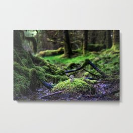 Signs Of Life Metal Print