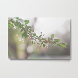One spring evening Metal Print