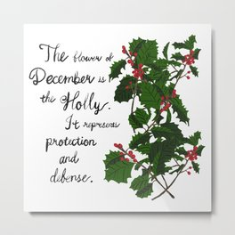 Holly - Birth Month Flower for December Metal Print
