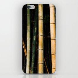 Bamboo Spectrum iPhone Skin